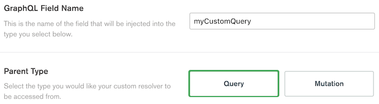 The name and type configuration inputs of a custom query